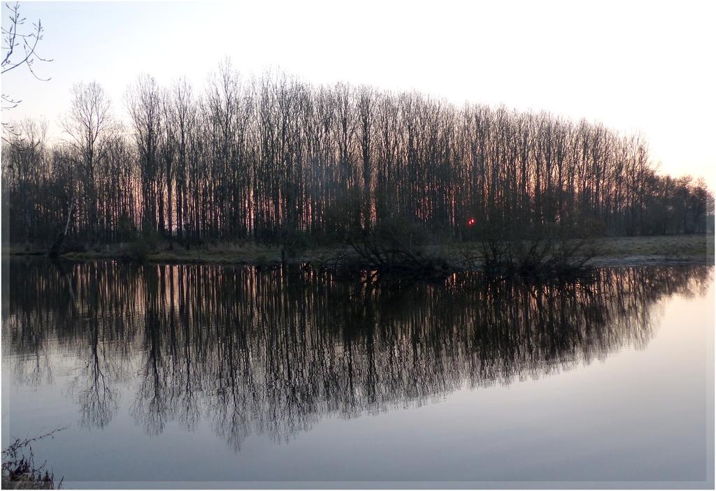 Autre Lieu...même rivière ...lever du jour ... P1330268