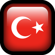 Translate Blog in Turkish
